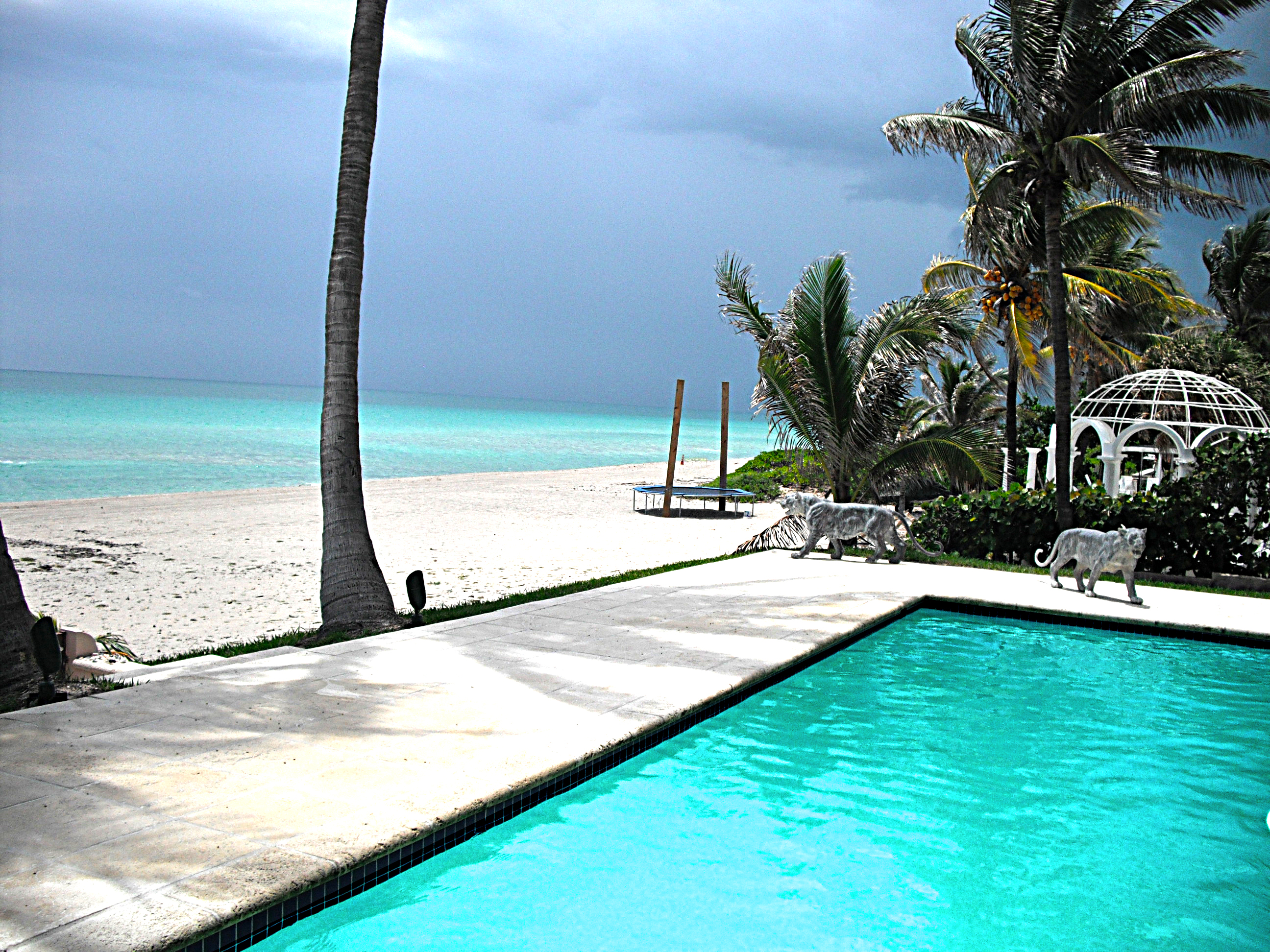You Can Rely On Experts Do It Better Fort Lauderdale Pool Service Fall In Love With Your
