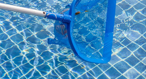 Protecting Your Pool from Debris